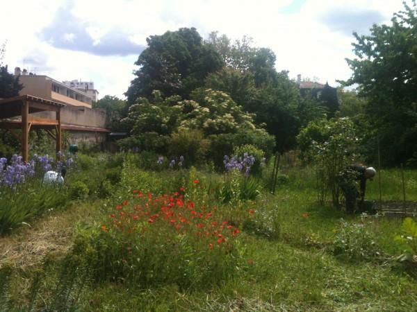 vue global du jardin
