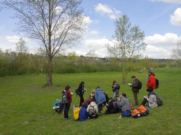 Des ateliers pour connaître les plantes sauvages comestibles de notre environnement !