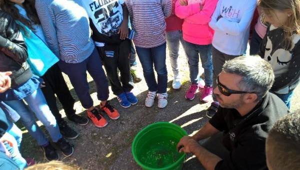 Le partenariat Classe d'eau : un module d'éducation à la citoyennté qui participe à la protection de l'eau