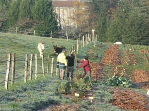 La biodiversité au cœur des jardins