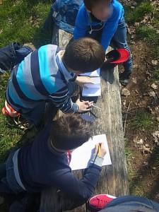 Une autre façon de découvrir et de sensibiliser : exemple au Parc de l'Orangerie