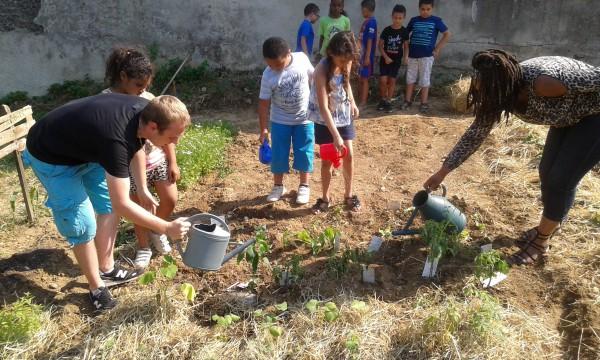Découvrez le projet « Mieux se nourrir », du jardin à l'assiette …