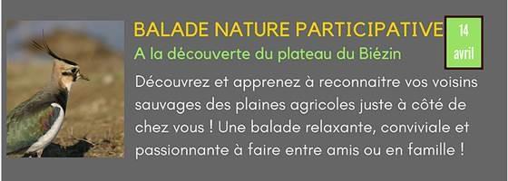 Sur l'Est Lyonnais pour les vacances de Pâques ? Pourquoi ne pas participer samedi 14 avril à une sortie nature – gratuite, ouverte à tous ?