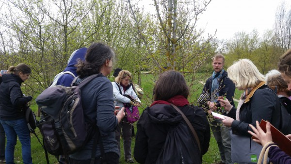 Faites connaissance avec l'atelier «connaître les plantes sauvages comestibles dans leur environnement» !