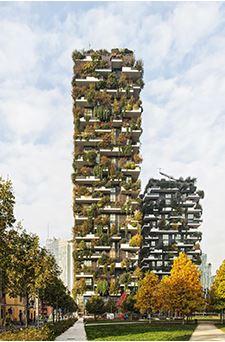 Forêts verticales et métropoles biodiverses : Une exposition à découvrir jusqu'au 13 avril au CAUE
