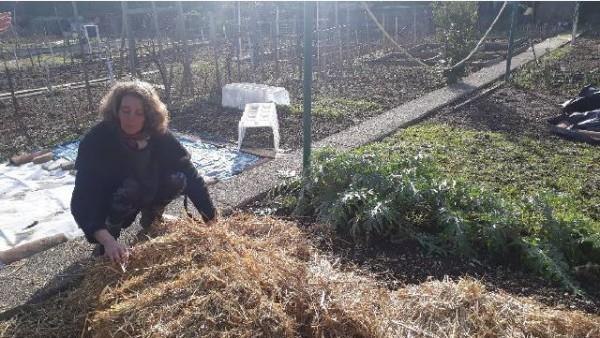 Formation des jardiniers amateurs de la Ville de Bron aux pratiques agroécologiques