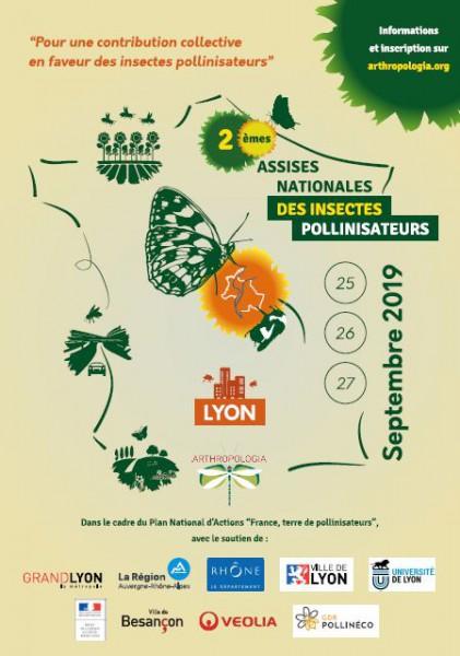 Insectes pollinisateurs : trouver des solutions simples, accessibles à tous pour les préserver !