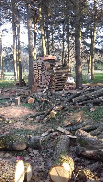 Sculpture sur bois à Parilly : une œuvre de 7 m. d'envergure et de 3 m. de haut à découvrir !