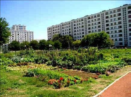 Le jardin partagé de Pré Sensé, Lyon 8