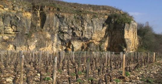 La « clef des terroirs » montre comment l'agriculture biodynamique s'applique à la production du vin