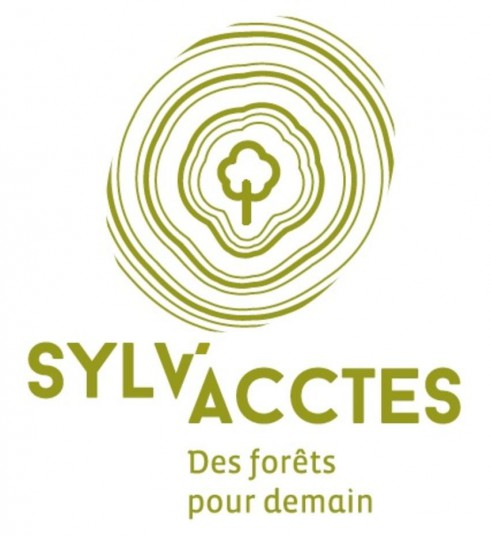 Logo de l'association Sylv'acctes