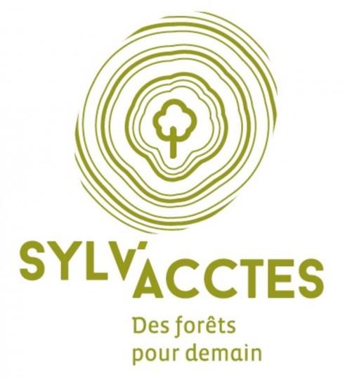 Logo de l'association Sylv'acctes