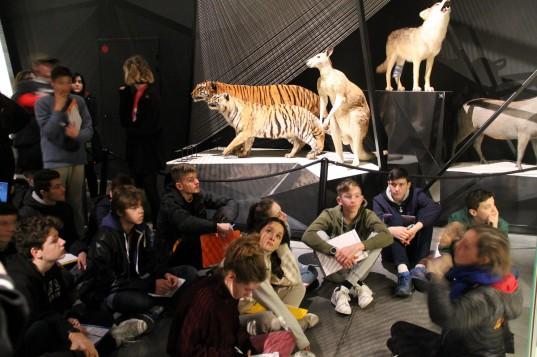 Les élèves (re)découvrent l'histoire des différentes espèces
